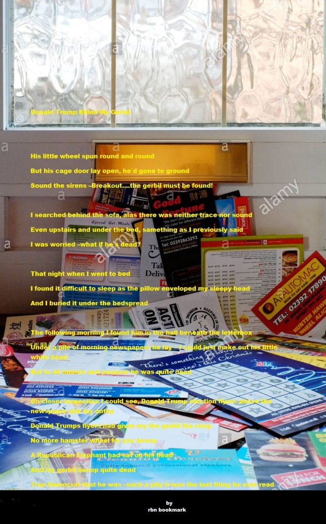a-huge-pile-of-junk-mail-that-has-been-put-through-the-letter-box-DW4AT4.jpg