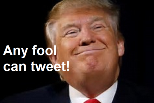 any fool can tweet.png